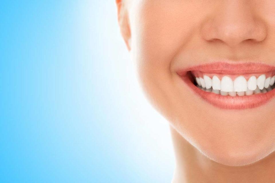 Budowa zęba i przyzębia – jak zbudowane są zęby?